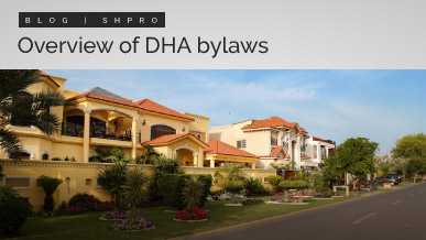Overview of DHA bylaws